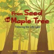 From Seed to Maple